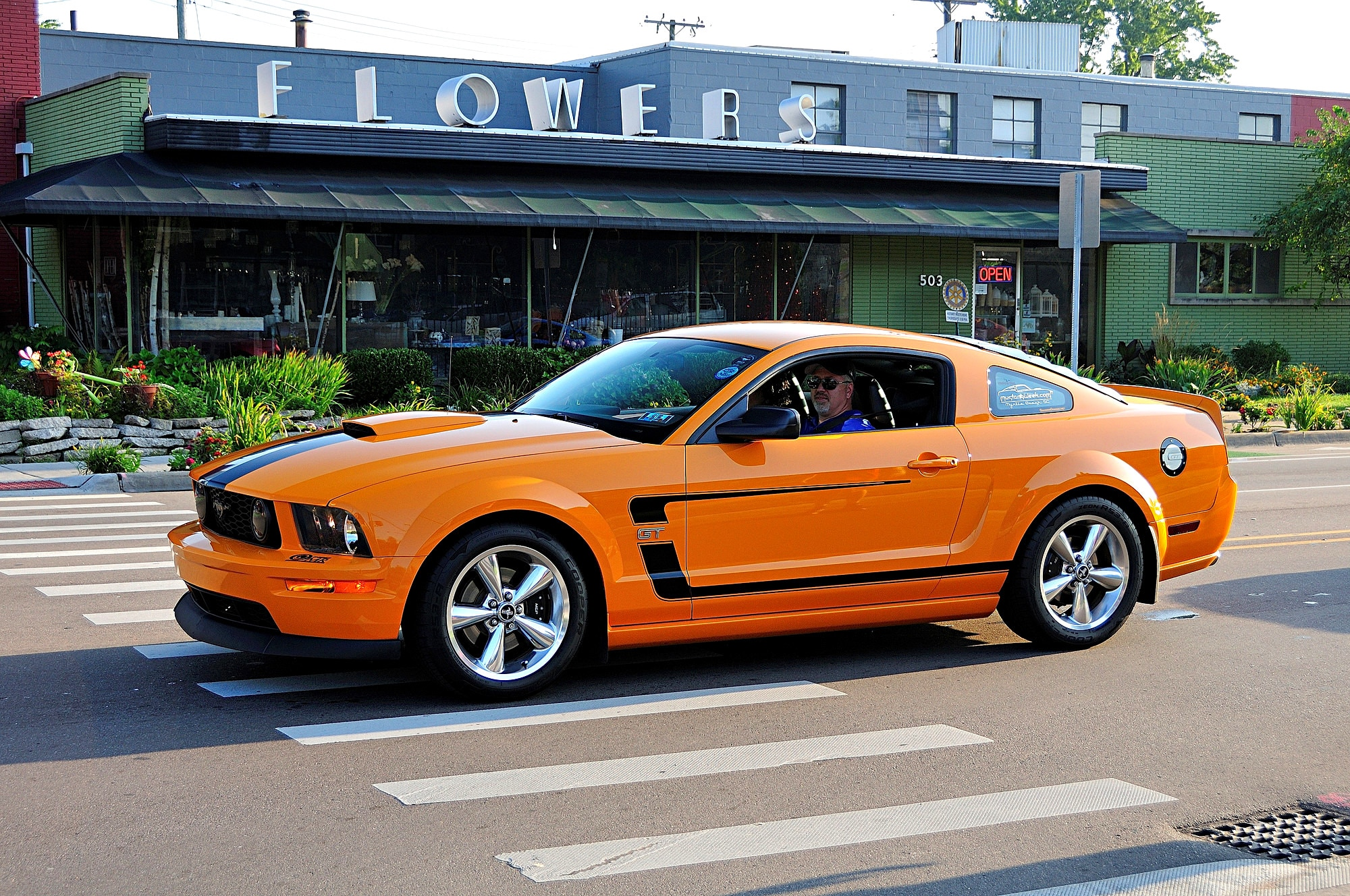 2016 Woodward Dream Cruise Mustang Alley 276
