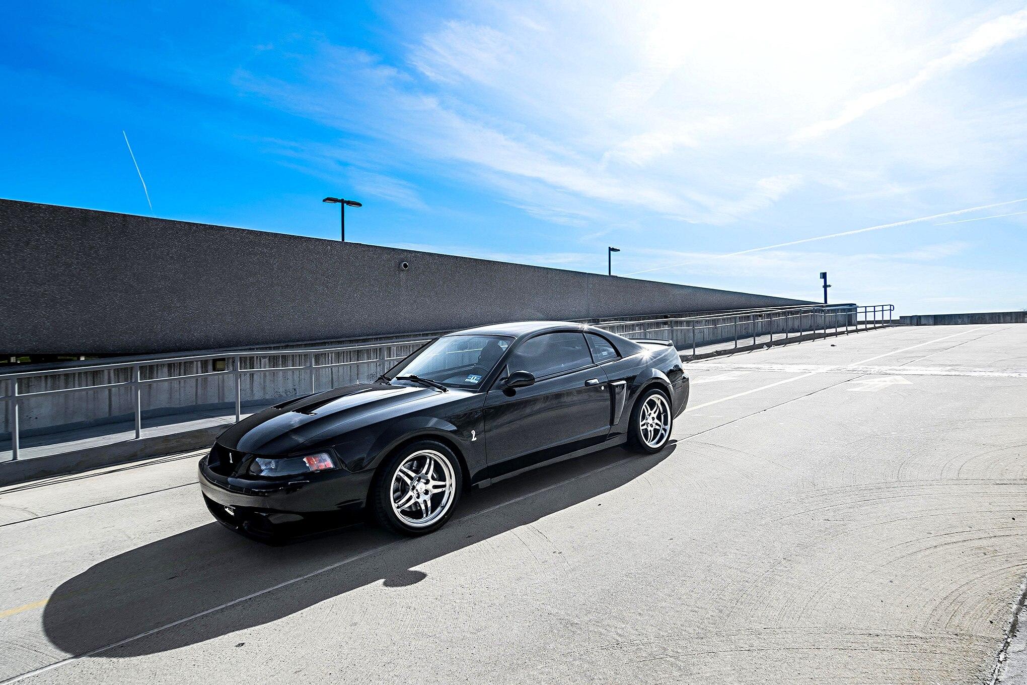 Carlos Black Cobra 9 2003 Ford Mustang Terminator