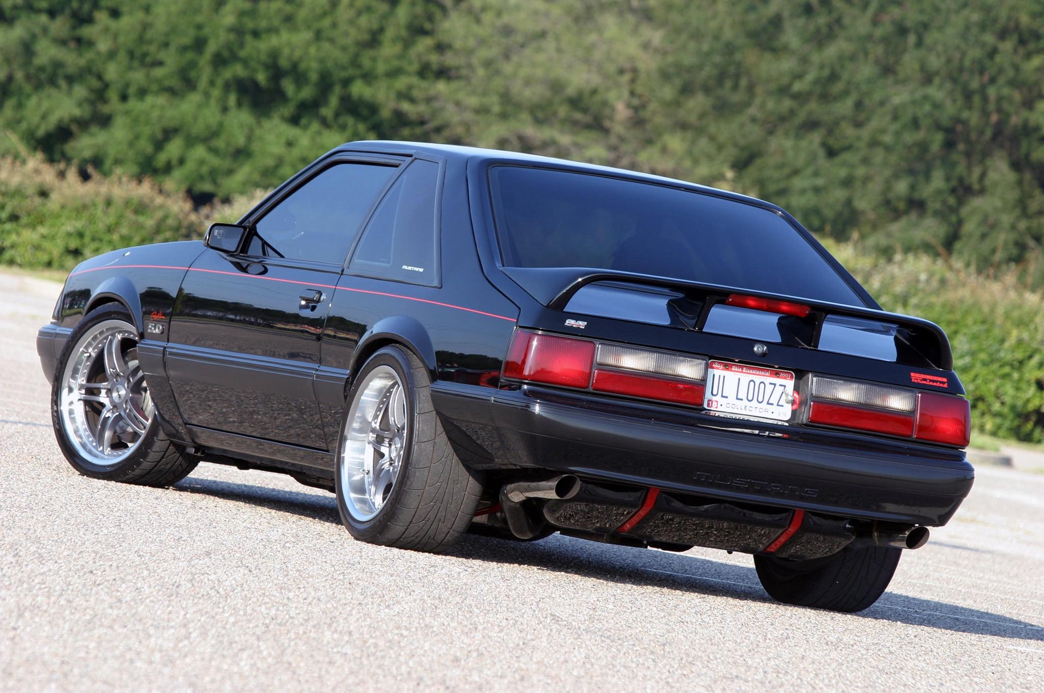 Mustang Terminator Review