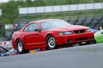2003 Svt Cobra Mustang 006