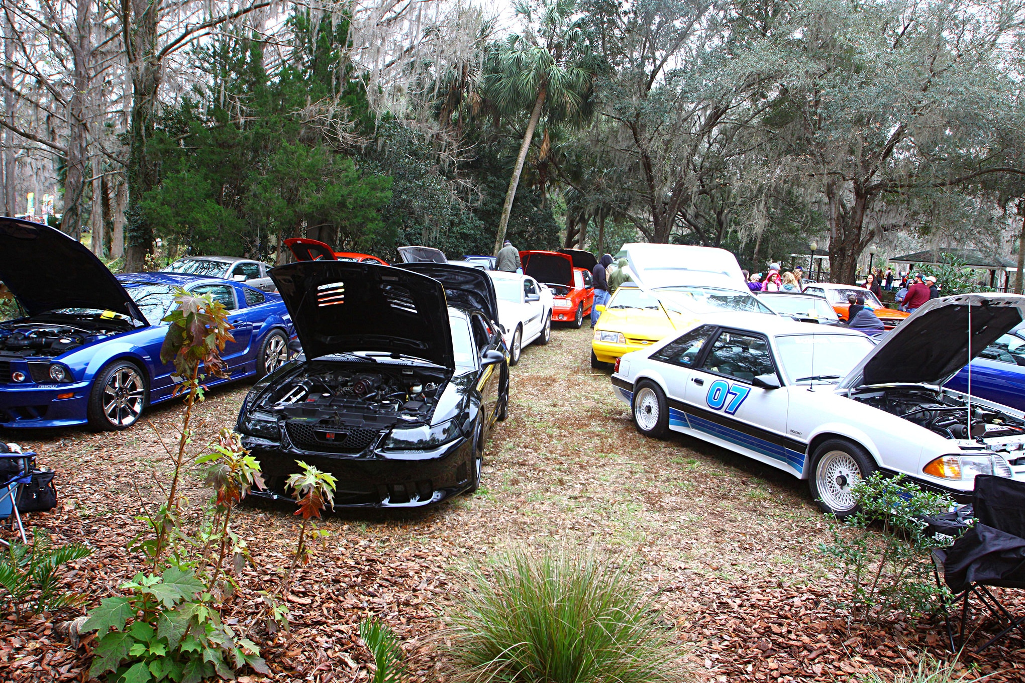 2018 Silver Springs Mustang Show157