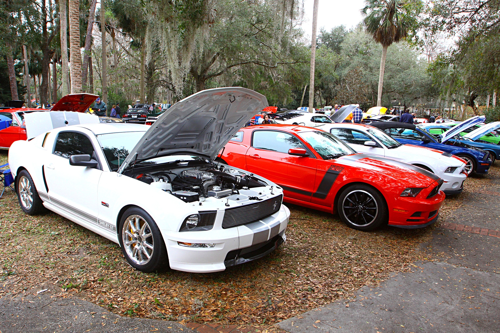 2018 Silver Springs Mustang Show153