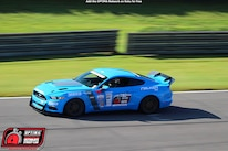 Mike Maier 2017 Ford Mustang DriveOPTIMA Barber Motorsports Park 2018 434