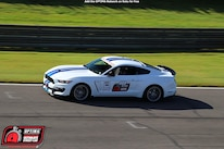 Charlie Rogers 2017 Ford Mustang DriveOPTIMA Barber Motorsports Park 2018 441