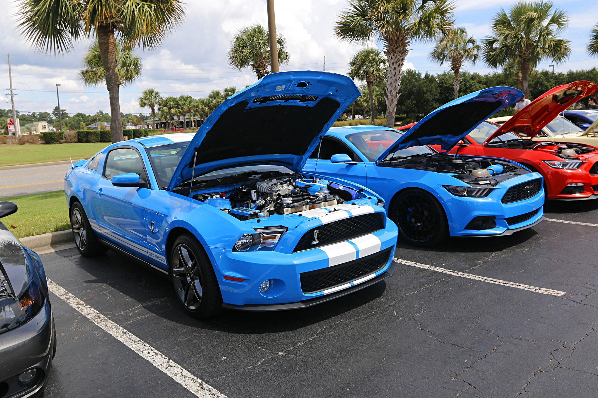 Mustang Week Meet N Greet 117