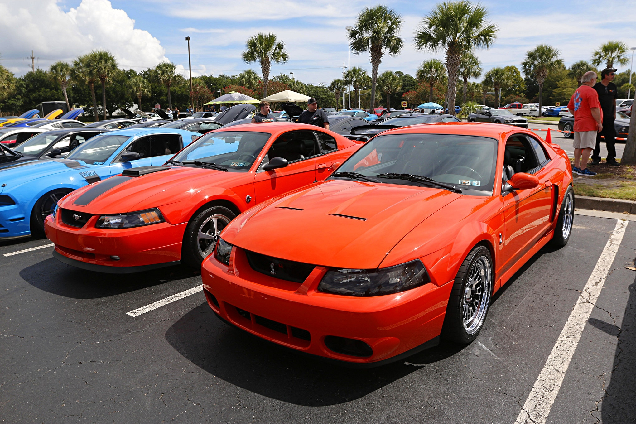 Mustang Week Meet N Greet 42