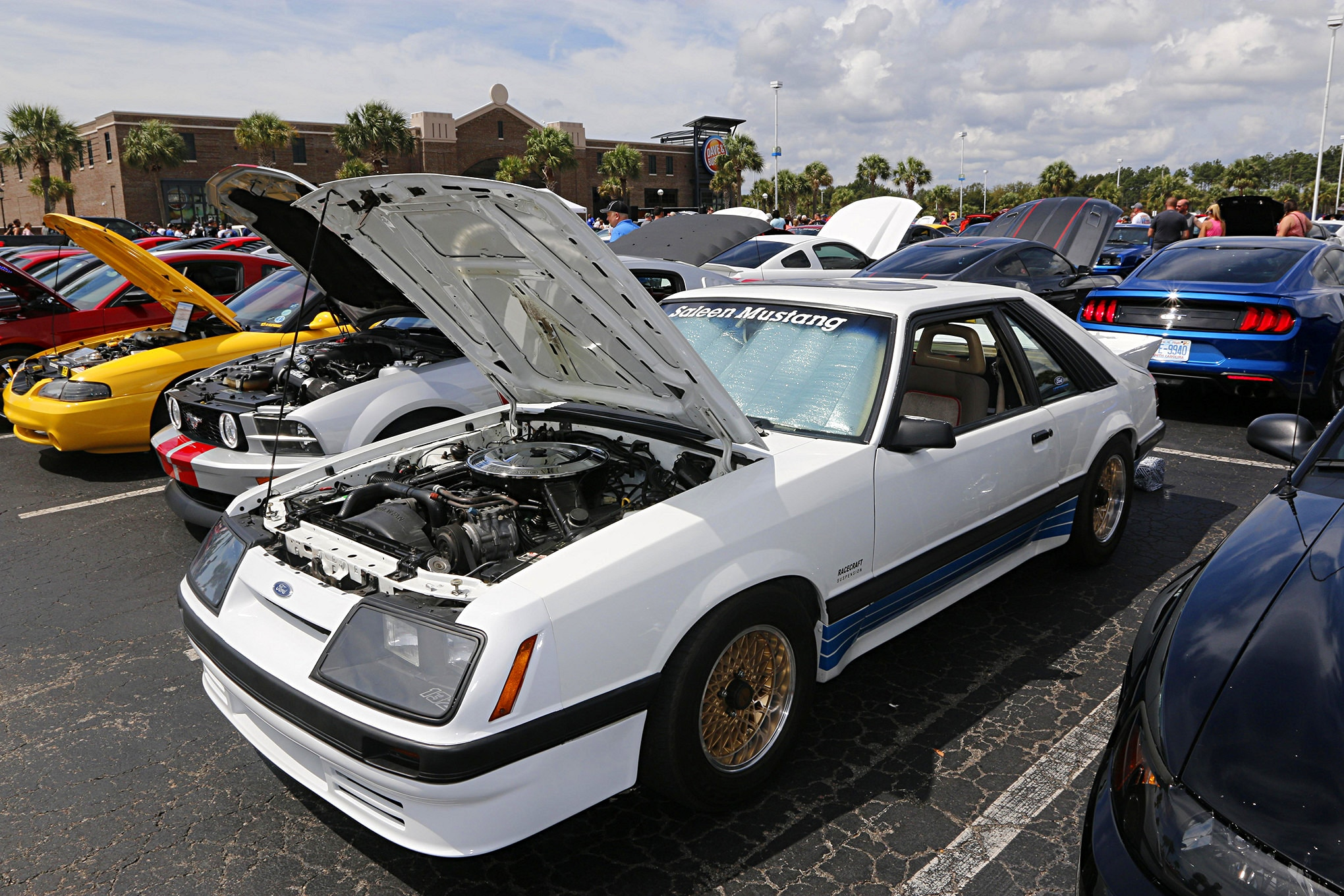 Mustang Week Meet N Greet 35
