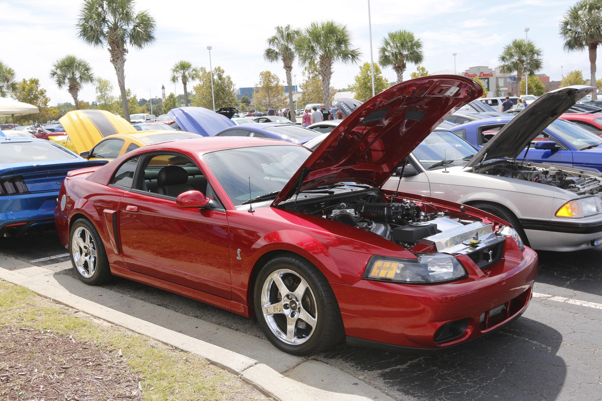 Cobras From Mustang Week 2018 2