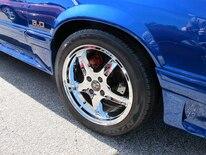 Foxtoberfest Wheels 112