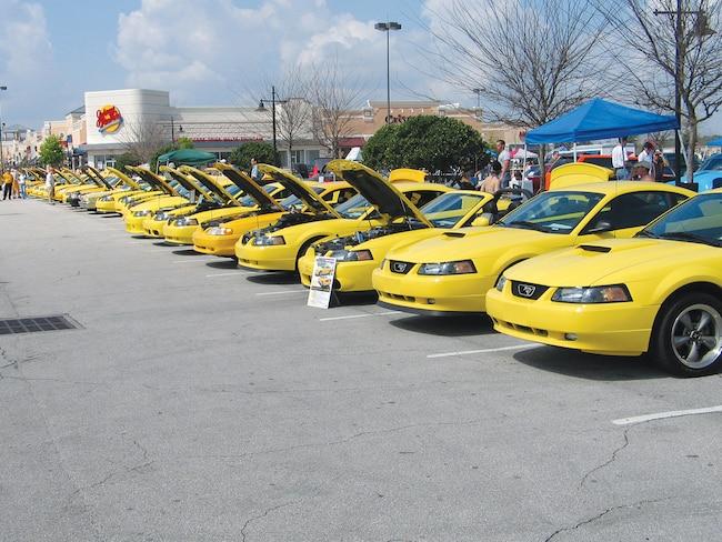 M5lp 0408 02  Yellow Mustang Registry Show Mustang Show
