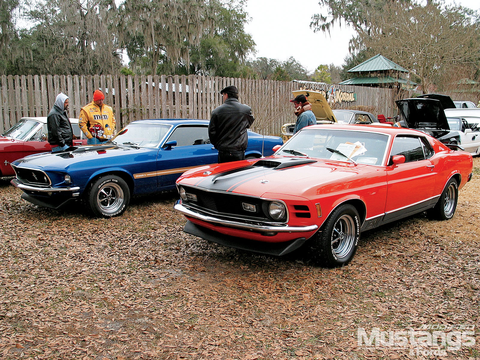 16Th Annual Silver Springs Ford And Mustang Roundup Mustang Roundup