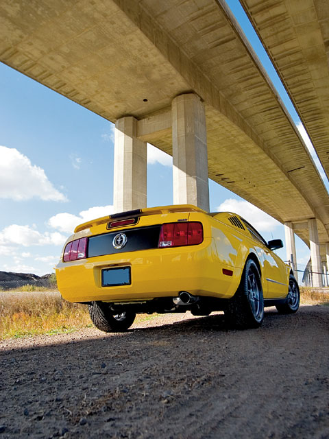 2006 V6 Mustang Backview