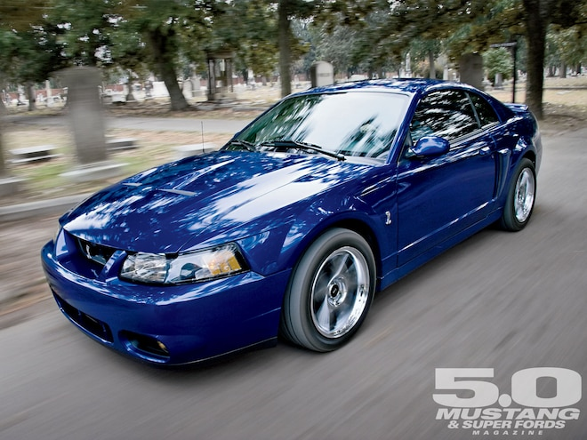 2003 Ford Mustang Cobra Terminator 5 0 Mustang Super Fords