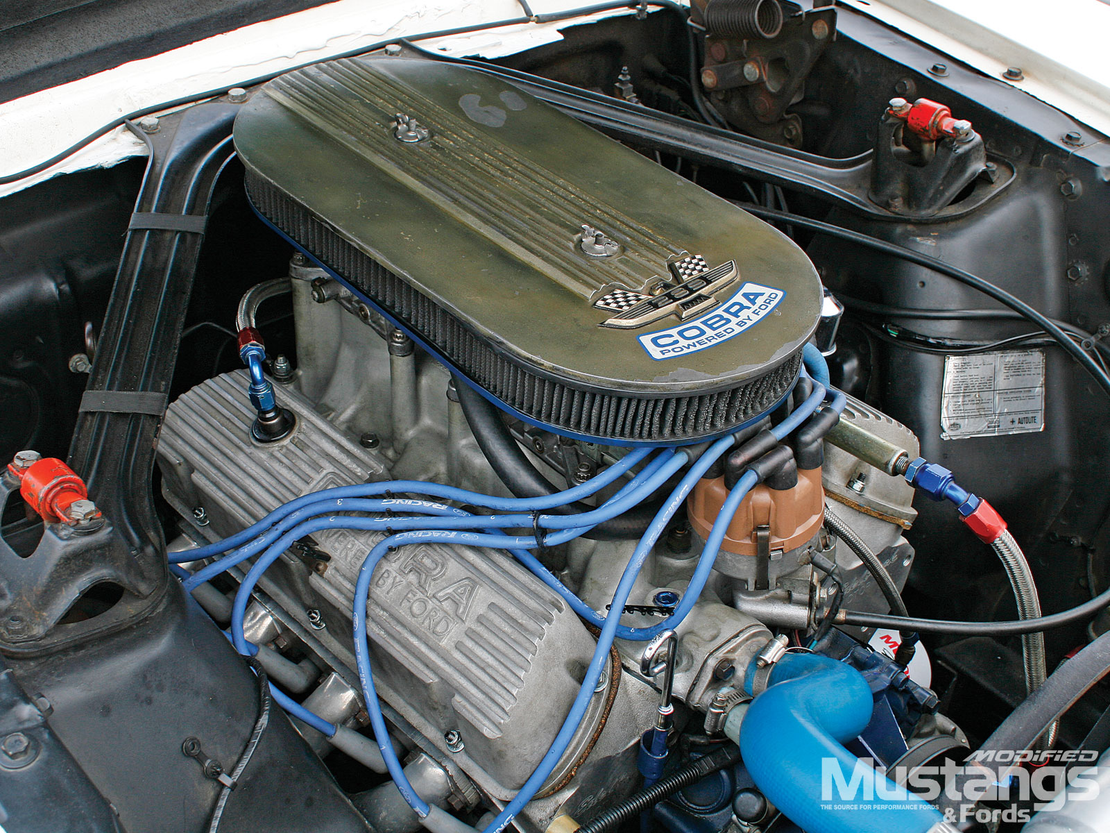 1966 Shelby Hertz Gt350h  Engine