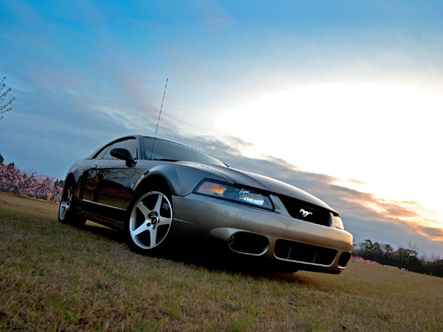 2003 Svt Cobra Bottom Front