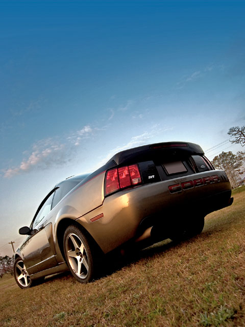 2003 Svt Cobra Backview