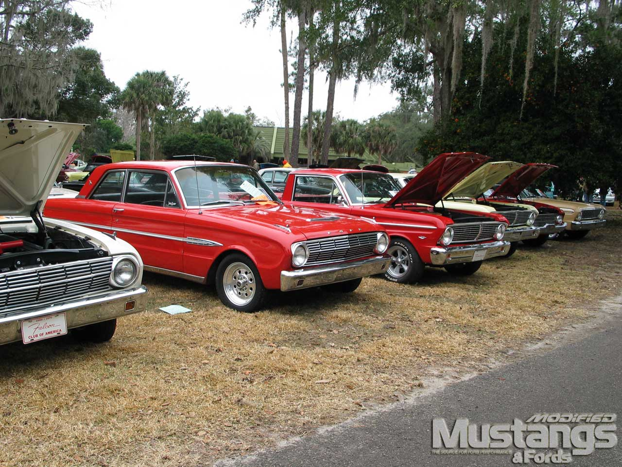 Mdmp_1005_17 2010_silver_springs_all_ford_roundup