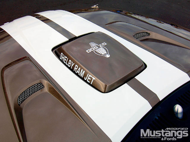 2002 Shelby Tribute Mustang Hood