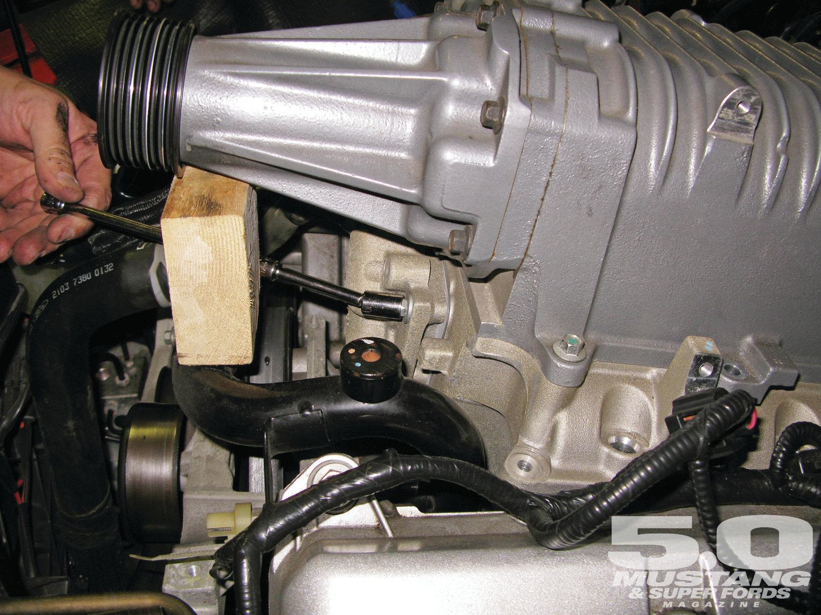 Terminator Cobra Supercharger