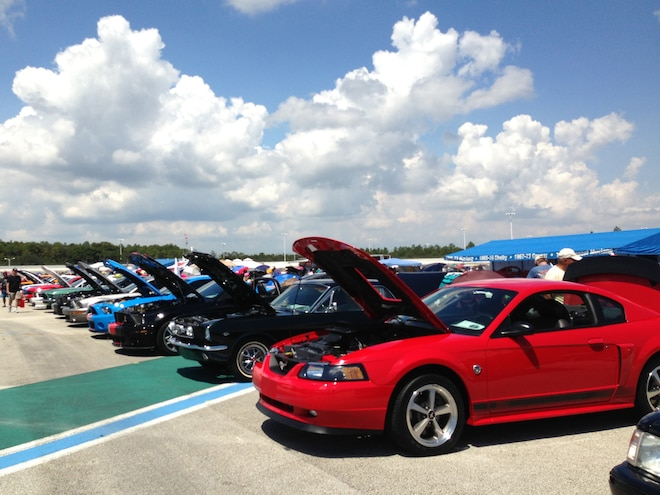 Mustang Club Of America >> Mustangs At The Mickyard Hosted By Mustang Club Of America