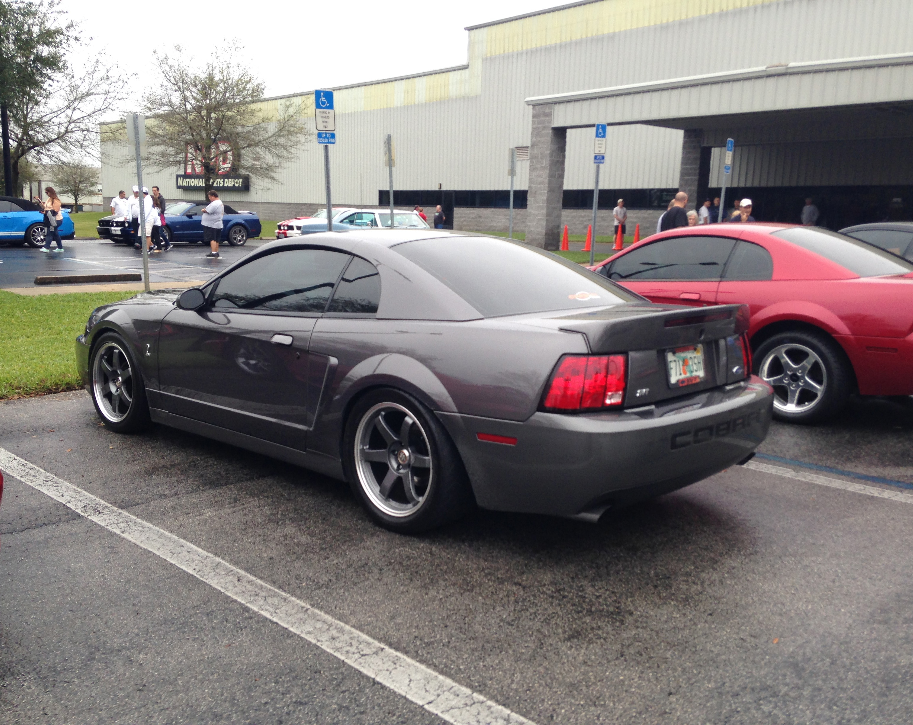 1401 Ford Mustang Cobra Terry
