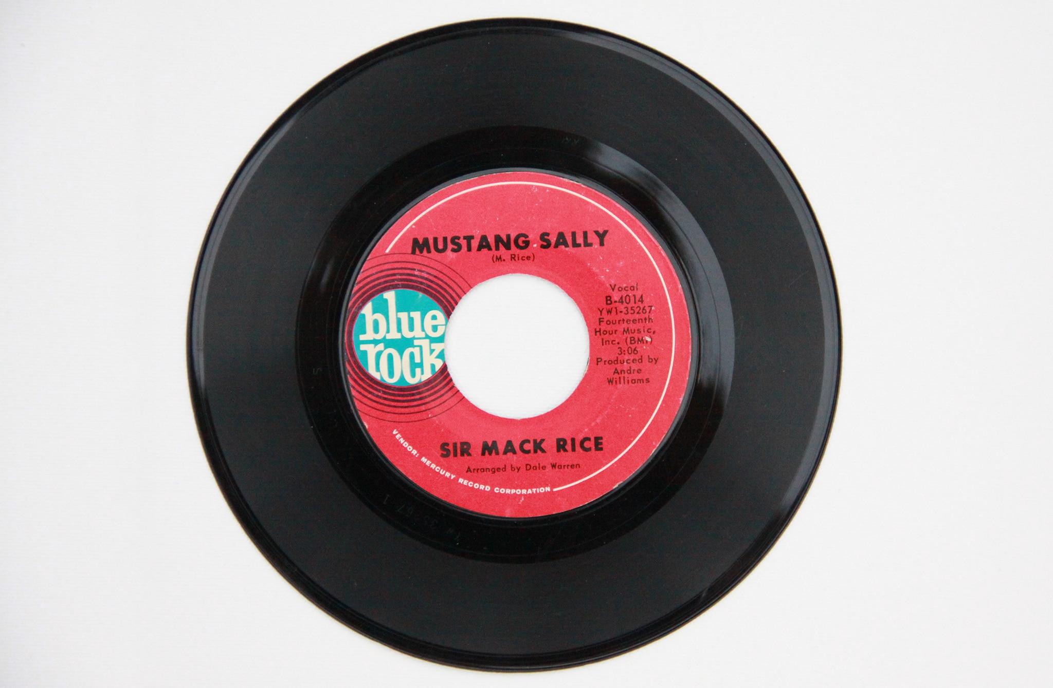 Ford Mustang Sally Vinyl Record