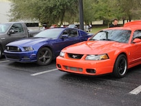 1401 Ford Mustangs Cobra And Gt
