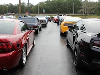 1401 Ford Mustangs Npd Lineup