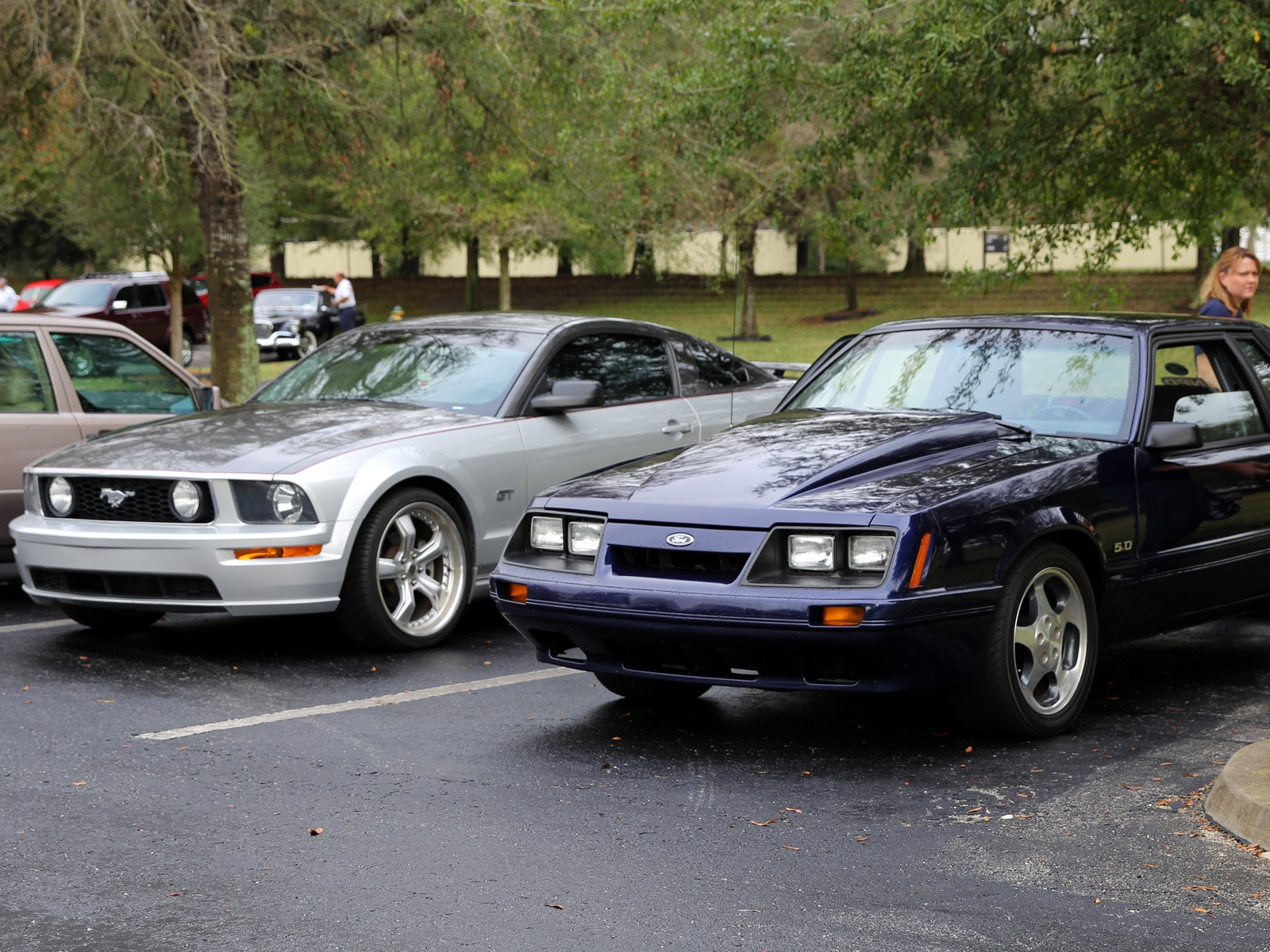 1401 Ford Mustangs Parked Npd