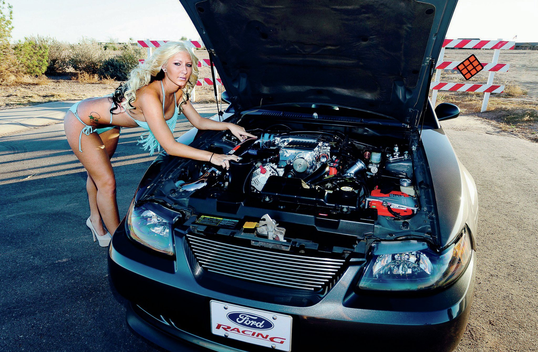 2003 Ford Mustang Engine View Emily Oney