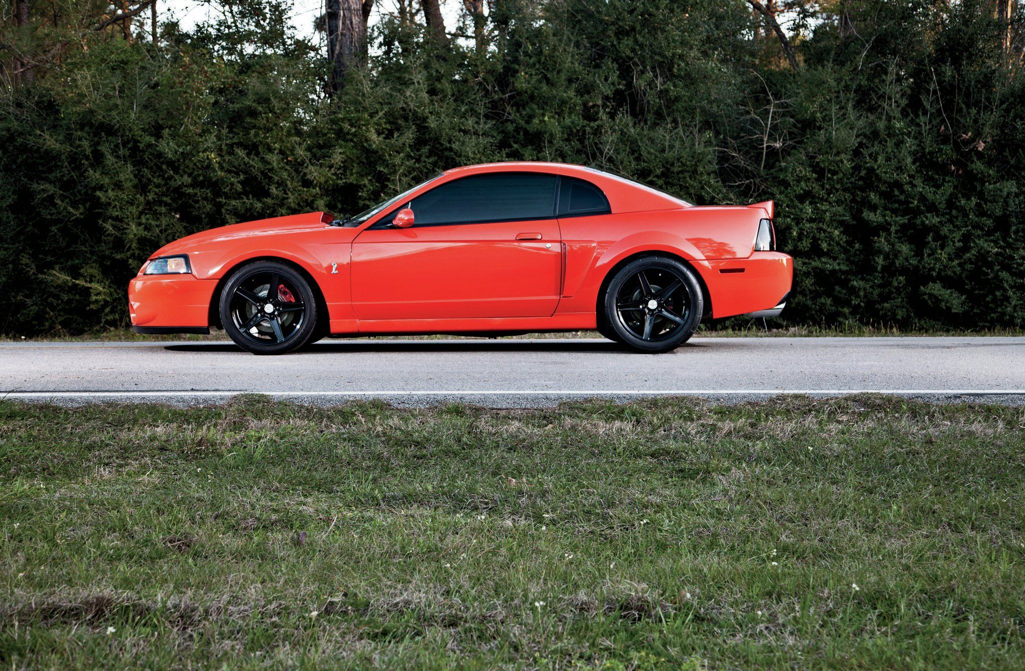 2004 Ford Mustang Cobra Drivers Side View