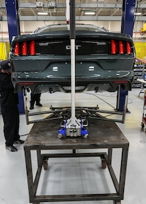 Mustang Jack