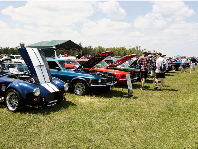 Mustangs & Mustangs Car Show Group View