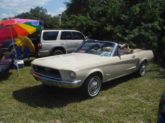 2007 Mustang Club Of Tampa Car Show 1968 Convertible