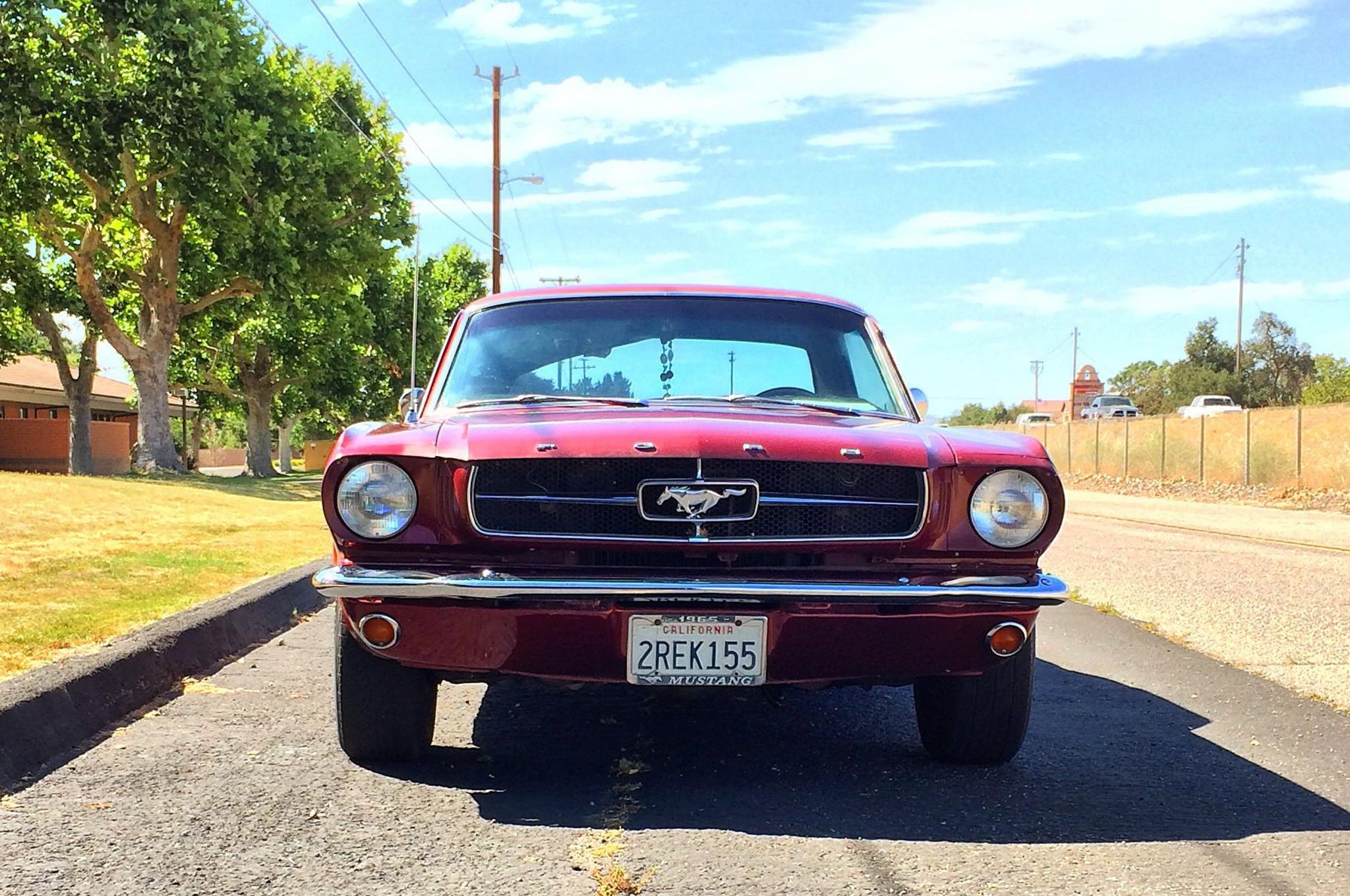 Mustang Girl Monday Becky Watson 05