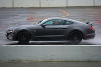 Mustang Action