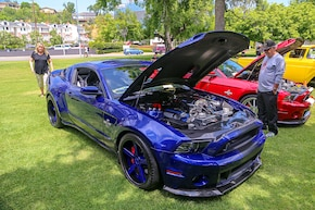 Mustangs in the Park