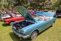 Mustangs In The Park_Stephen Russo 114