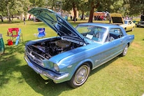 Mustangs In The Park_Stephen Russo 118