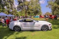 Mustangs In The Park_Stephen Russo 123