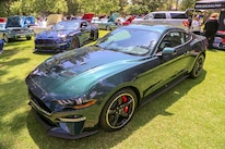 Mustangs In The Park_Stephen Russo 125
