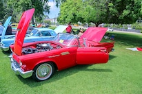 Mustangs In The Park_Stephen Russo 13