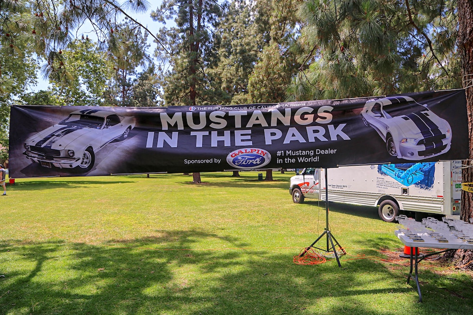 Mustangs In The Park_Stephen Russo 133