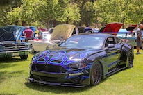 Mustangs In The Park_Stephen Russo 134