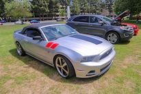 Mustangs In The Park_Stephen Russo 20