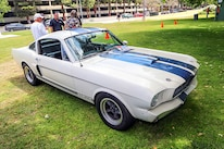 Mustangs In The Park_Stephen Russo 25