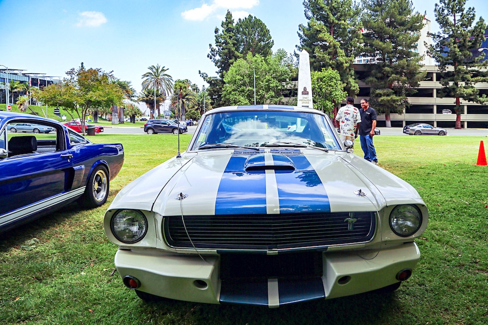 Mustangs In The Park_Stephen Russo 37 2
