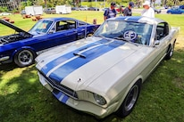 Mustangs In The Park_Stephen Russo 39