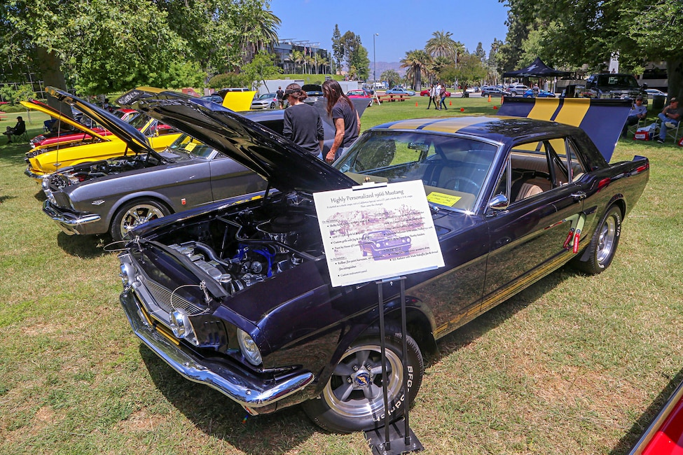 Mustangs In The Park_Stephen Russo 52