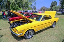 Mustangs In The Park_Stephen Russo 54